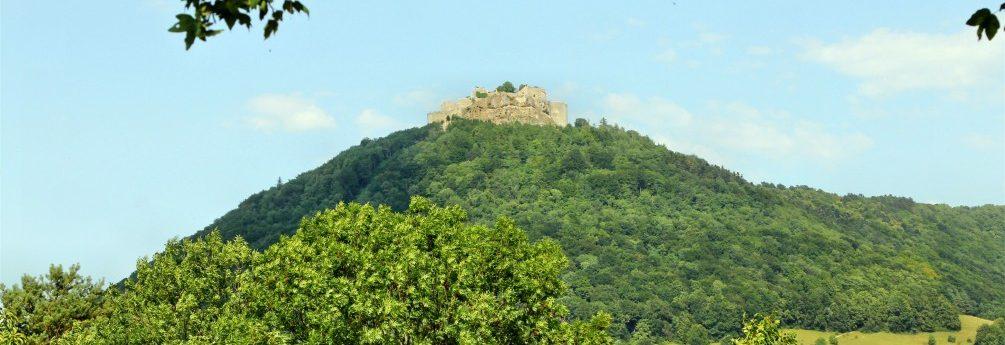 Schwäbischer Albverein | Ortsgruppe Neuffen